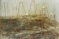 010. Illes, 2002