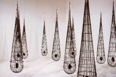 004. Embryos in 11 cages, 1996