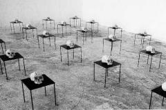 002. Terra Ingognito, 1994